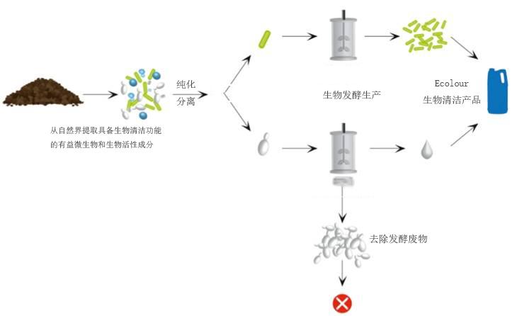 生物技术型环保浑洗剂消费示意图