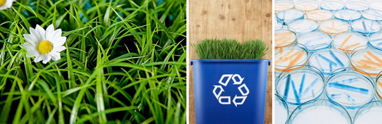 生物技术型环保浑洗剂源自大自然动物和泥土